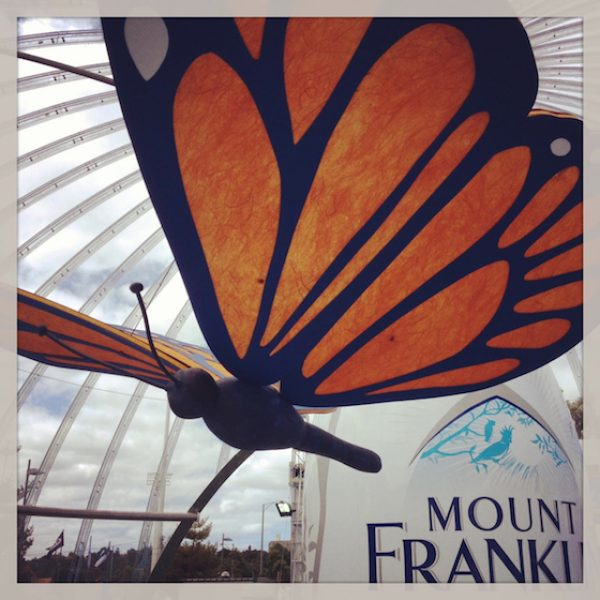 Mount-Franklin-Dome-4-copy