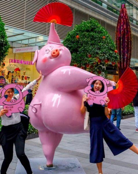 Dancing Pig 1